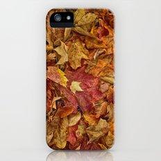 Falls textures Slim Case iPhone (5, 5s)