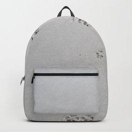 Dog Beach Backpack