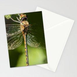 Australian Emerald Dragonfly Stationery Cards