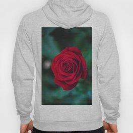Romantic Red Rose Hoody