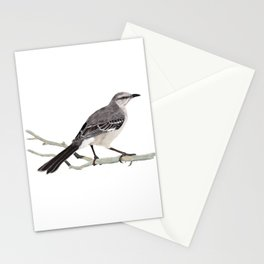 Northern mockingbird - Cenzontle - Mimus polyglottos Stationery Cards