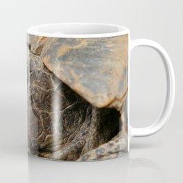 Close Up Side Portrait Of A Turkish Tortoise Coffee Mug