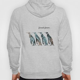 Friends Forever Hoody