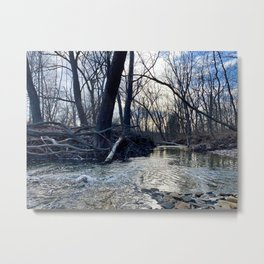 Creek Scene, Cuyahoga Valley Metal Print