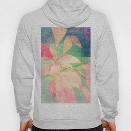 Autumn Pastels 03 - Faded Matte Hoody