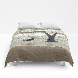 Take Off Comforters