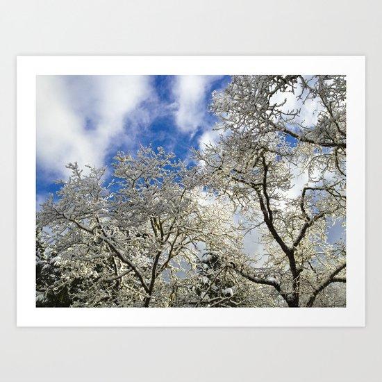 Blue And White Art Print
