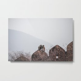 Monkeys at a wall, Amber fort India | Travel photography Metal Print