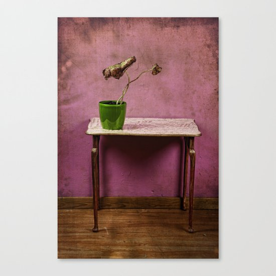 The colorful decay of plants Canvas Print