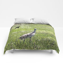 Unfazed Comforters