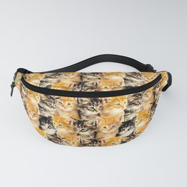 Kittywall Fanny Pack