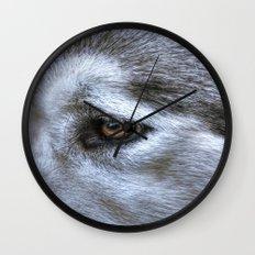 Eye of the dog Wall Clock