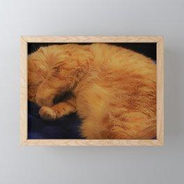 Aren't I cute! Framed Mini Art Print