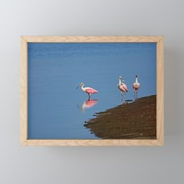 When You Can't Sing But Do It Anyway Framed Mini Art Print