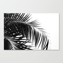 Palm Leaves Black & White Vibes #3 #tropical #decor #art #society6 Canvas Print