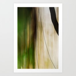 Forest, Water, Lines Art Print