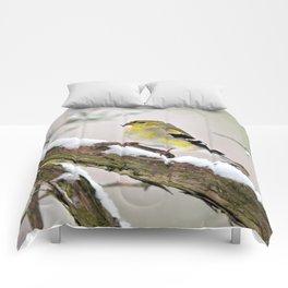 Balancing Act (American Goldfinch) Comforters