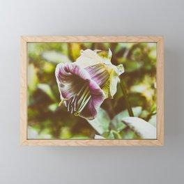 Tenderness Framed Mini Art Print