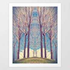 The nature of symmetry  Art Print