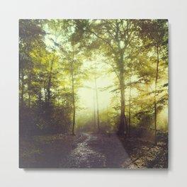 way of light Metal Print