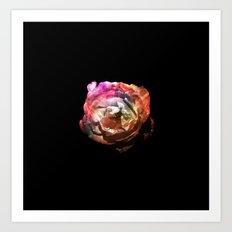 Flower in the Dark Art Print