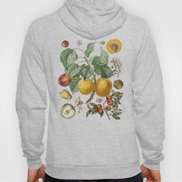 Apples Pears Peaches Hoody