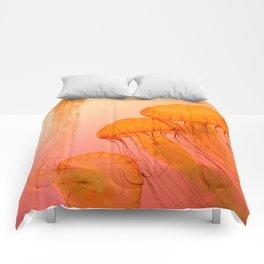 orange Comforters