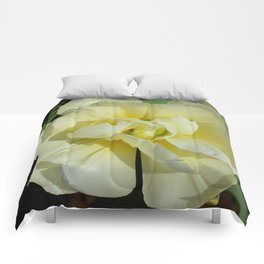 Double Cream Tulip by Teresa Thompson Comforters