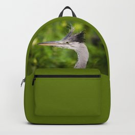 Young orphaned Ardea cinerea the grey heron Backpack