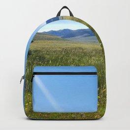 Cabin Creek Meadow Backpack