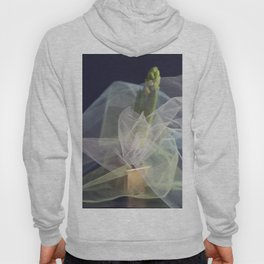 Abstract hyacinth 2 Hoody
