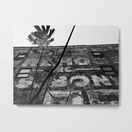 Renewal Metal Print