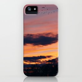Twilight iPhone Case