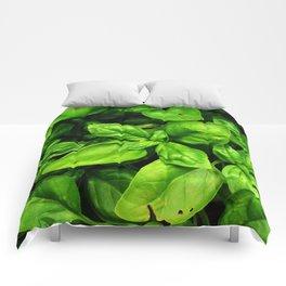 Raw Pesto Comforters