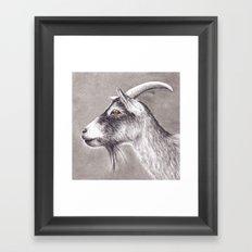 Little goat Framed Art Print