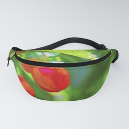 Red Cherries Painting Fanny Pack