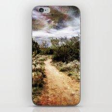 Down the Beaten Path iPhone & iPod Skin