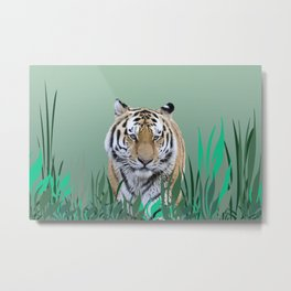 Tiger between green grass and leaves Metal Print