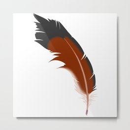 Northern Flicker, tail feather Metal Print
