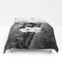 CHERRY B Comforters