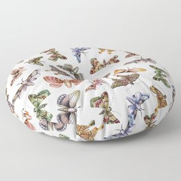 A Multitude Of Moths - Colorful Moth Pattern Floor Pillow