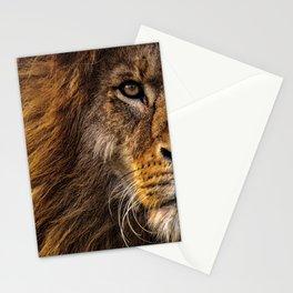 Majestic Lion Stationery Cards