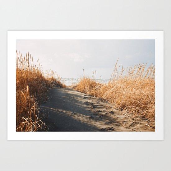 Trail to the beach Art Print