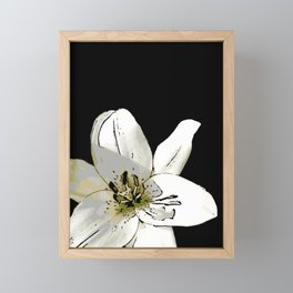 'Eyeliner' Lily Framed Mini Art Print
