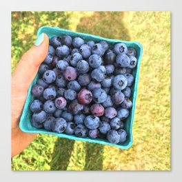 Berry Picking Canvas Print