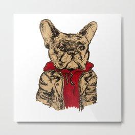 Cool Dog Metal Print