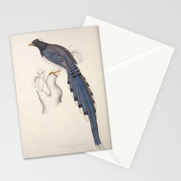 pica erythrorhyncha L9 Stationery Cards
