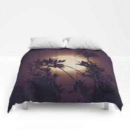 Moon in Blackberry Cream Comforters