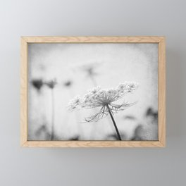 AFE Queen Anne's Lace BW Framed Mini Art Print