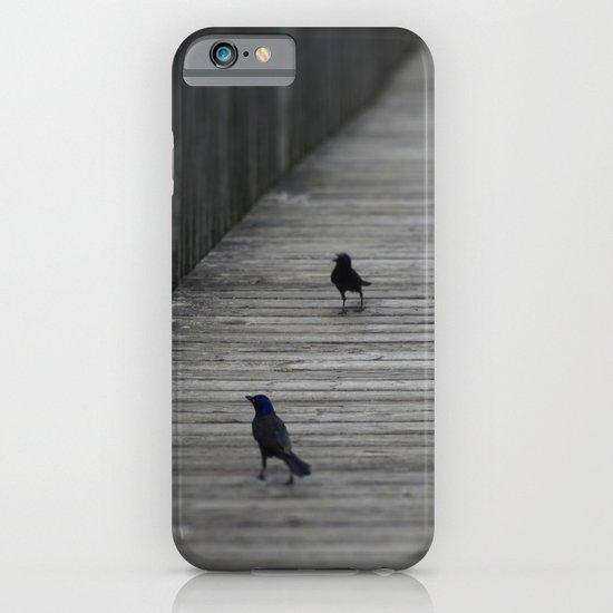 Black Birds iPhone & iPod Case